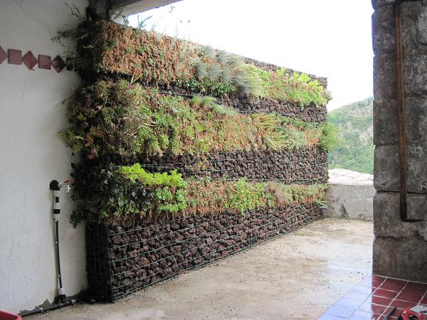 CLOTURE MUR GABION VEGETALISE